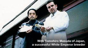 Warren with Japanese White Emperor breeder